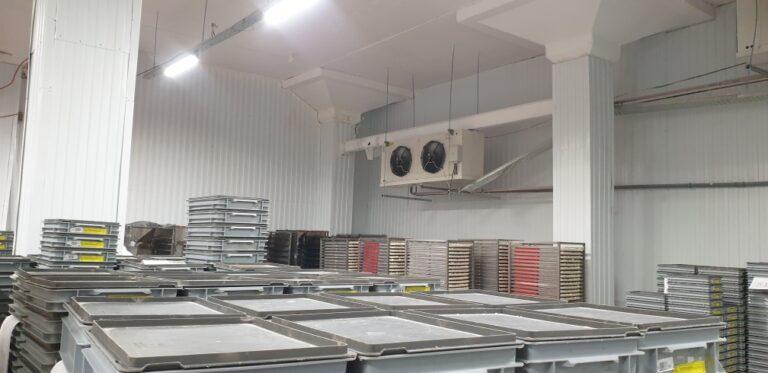Ремонт морозильной камеры и тарного цеха на предприятии «Мясновъ77»